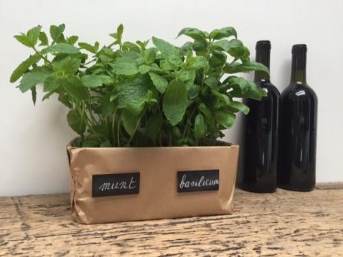 d%c3%a9corer-votre-jardin-de-plantes-aromatiques
