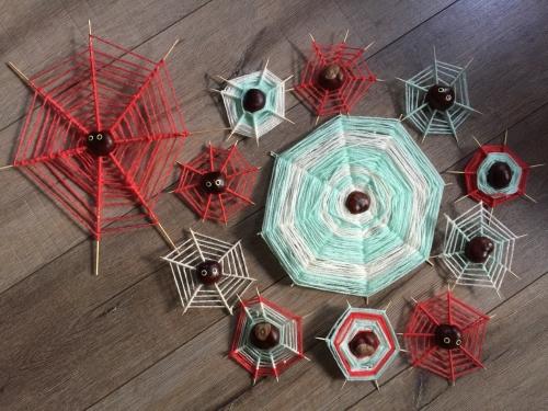 spinnenweb-