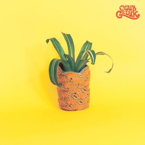 gehaakt-plantpotje-ananas